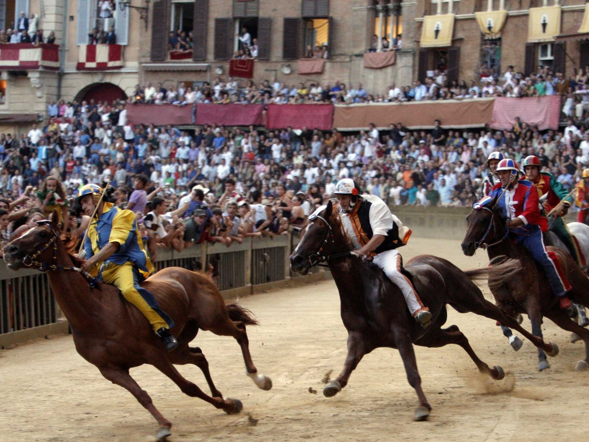 an analysis of the palio horse race in italys city siena It's not just a race, it's a passion what is the palio the palio is the most important event in siena, taking place on july 2 and august 16 every year in the palio, the various sienese contrade, or areas in which the city is divided, challenge each other in a passionate horse race in the heart of the city in the piazza del campo.