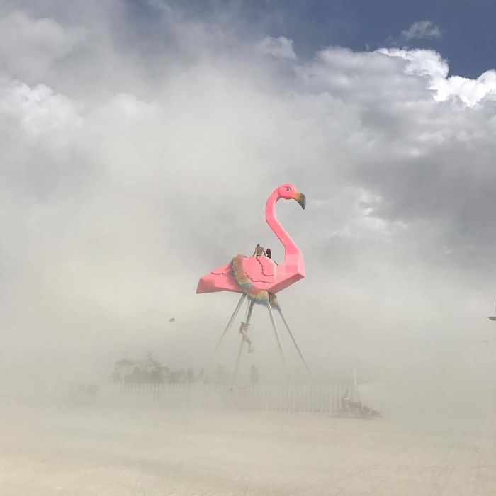 burning man 2017 (28)